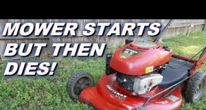 Lawn Mower Repair Service in Aurora & Denver CO
